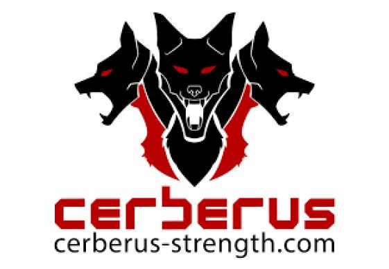 Коленные бинты Cerberus Performance 2,5м